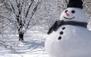 snowman55_1-medium